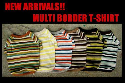 2010/09 マルチボーダーTシャツ