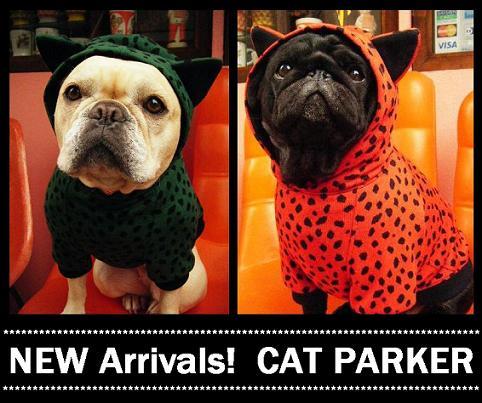 Cat_parker