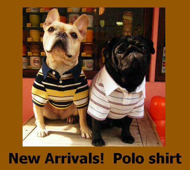 Polo_shirt_2