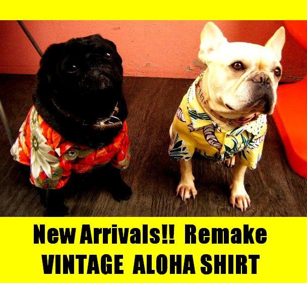 9m_dogwear_aloha