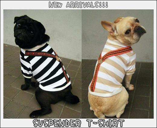 Suspender_t20116