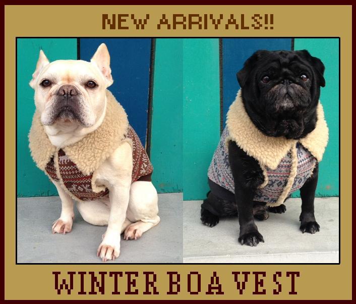 Winterboa1